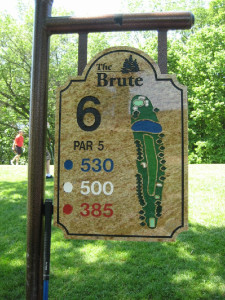 2011_Brute_Large_15